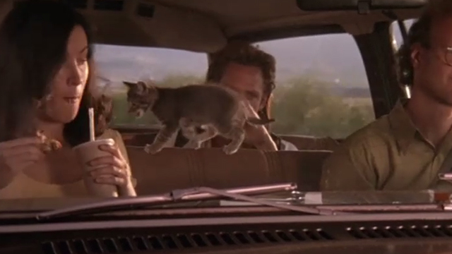 The Getaway - Rudy Michael Madsen in backseat of cat with tabby kitten Kitty walking on seat behind Fran Jennifer Tilly and Harold James Stephens