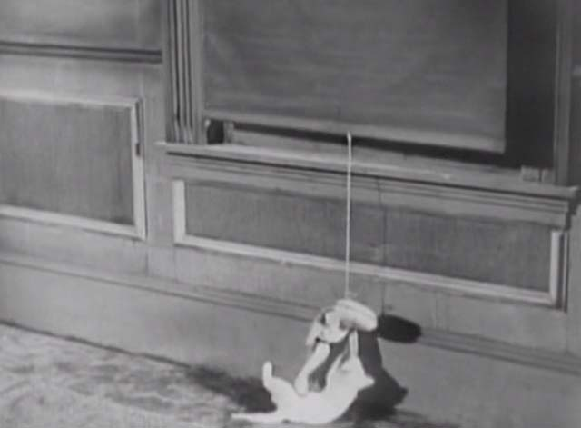 Ghost Parade - white kitten playing with doll tied to window shade pull