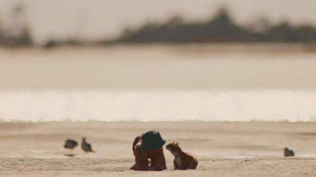 Gifted - one eyed cat Fred and Mary Mckenna Grace on beach