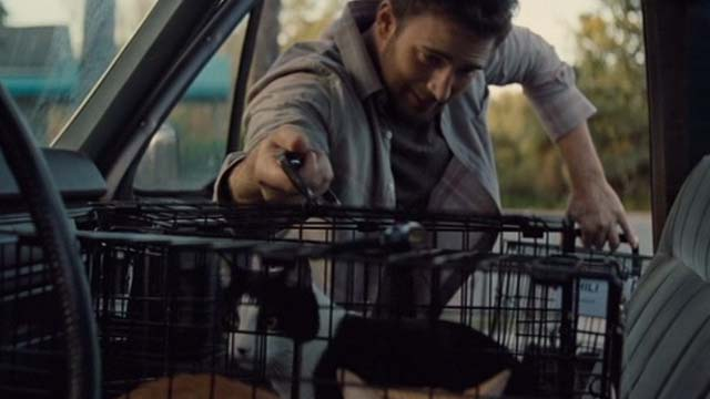 Gifted - one eyed cat Fred in cage in car with tuxedo cat Loui being loaded in by Frank Chris Evans