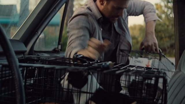 Gifted - Frank Chris Evans loading tuxedo cat Loui and tabby cat Chili in cages into car