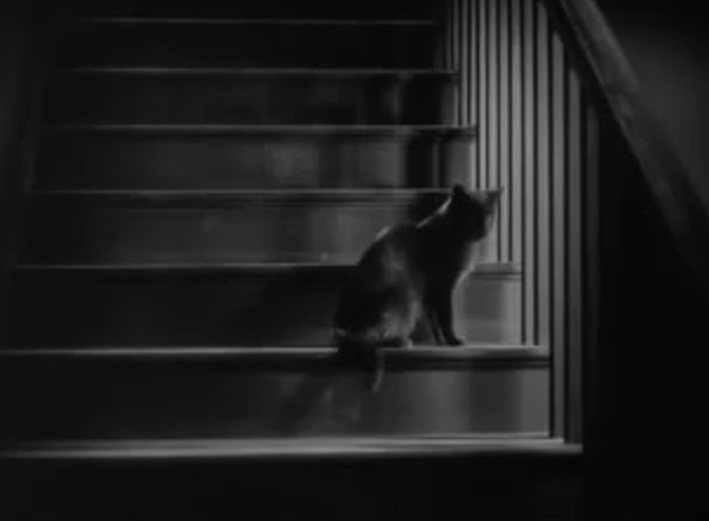 The Godless Girl - black cat on stairs