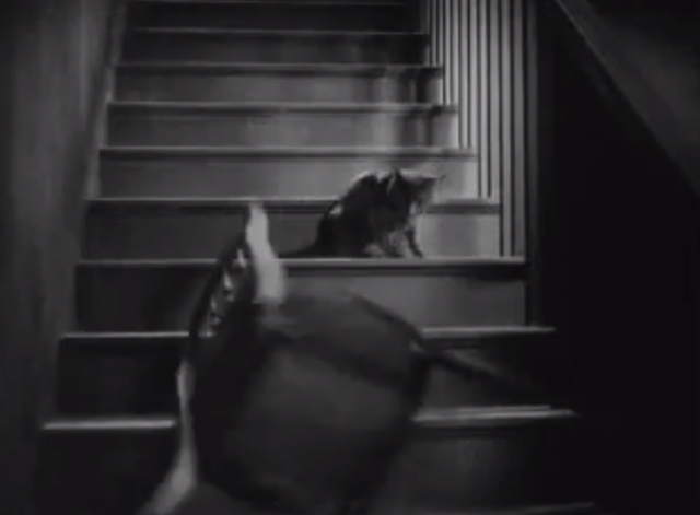 The Godless Girl - chair being thrown at black cat on stairs