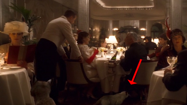 The Golden Compass - Siamese cat in restaurant scene