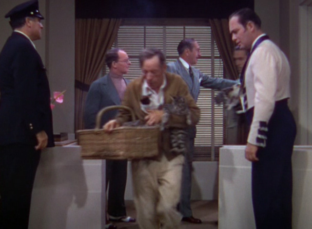The Goldwyn Follies - cats being carried out of office