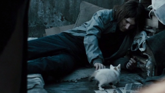 The Good Heart - Lucas Paul Dano playing with white and calico kitten