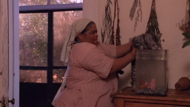 The Grass Harp - Catherine Nell Carter catches Bengal tabby cat getting in goldfish bowl