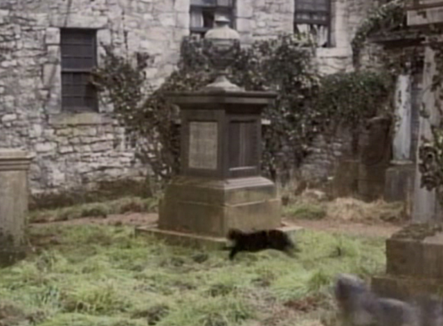 Greyfriars Bobby - tuxedo cat chased by dog Bobby