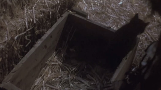 Halloween 5: The Revenge of Michael Meyers - Samantha wooden box of kittens in barn