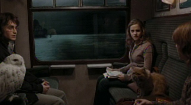 Harry Potter and the Goblet of Fire - Crookshanks cat on Hogwart's Express