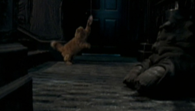 Harry Potter and the Order of the Phoenix - Crookshanks cat attacking eavesdropping ear