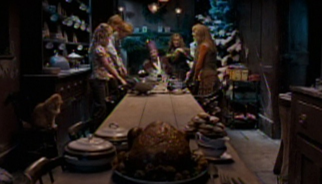 Harry Potter and the Order of the Phoenix - cat Crookshanks at Weasley Christmas