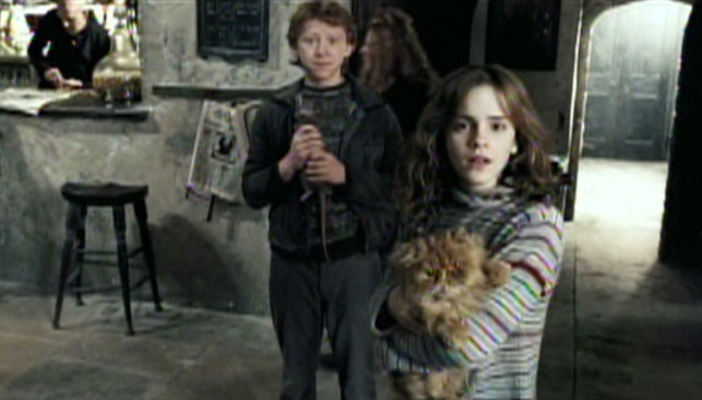 Harry Potter and the Prisoner of Azkaban - Crookshanks cat with Hermione and Ron