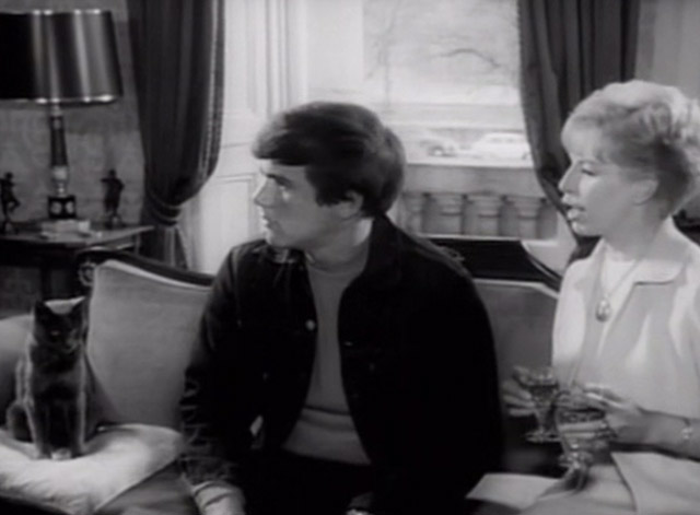 Having a Wild Weekend - gray cat sitting on couch with Steve Dave Clark and Nan Yootha Joyce