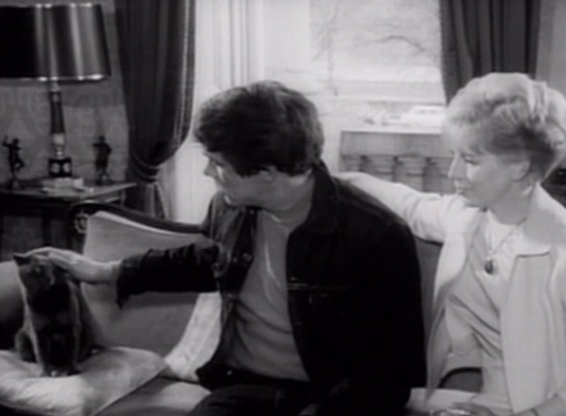 Having a Wild Weekend - gray cat sitting on couch being petted by Steve Dave Clark with Nan Yootha Joyce