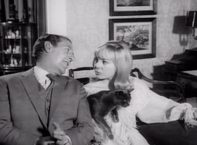 Having a Wild Weekend - Dinah Barbara Ferris holding gray cat on couch with Guy Robin Bailey