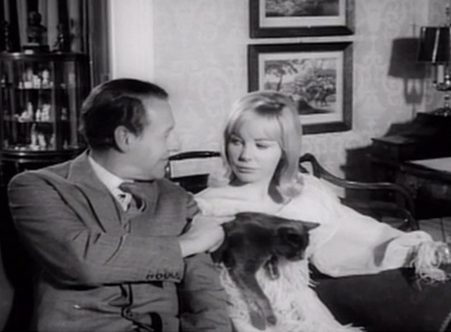 Having a Wild Weekend - Dinah Barbara Ferris holding gray cat on couch with Guy Robin Bailey petting cat