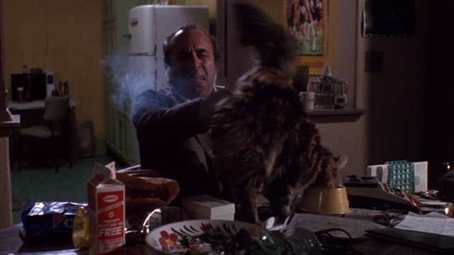 Heart Condition - Jack Moony Bob Hoskins pushing away tail of long haired tabby Chuck on table