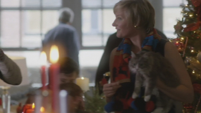 A Heavenly Christmas - gray and white Maine Coon cat Forbes held by woman at party