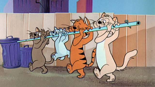 Hey There, It's Yogi Bear - line of cats playing a fife