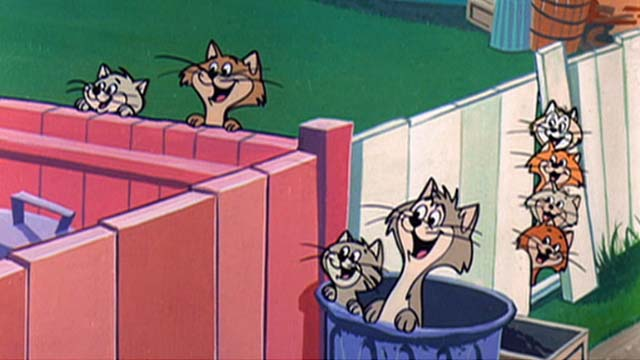 Hey There, It's Yogi Bear - cats popping out of garbage cans and from behind fence