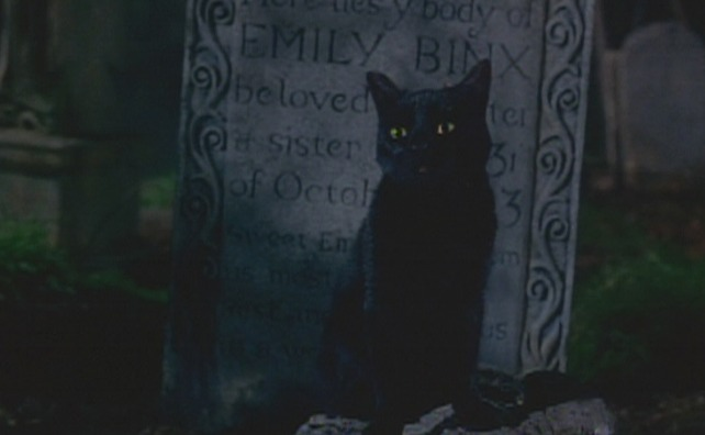 Hocus Pocus black cat Binx on grave