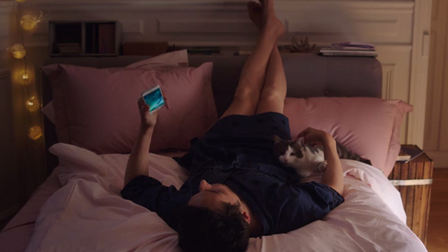 I Am Not an Easy Man - Damien Vincent Elbaz on bed with gray and white cat Rocco