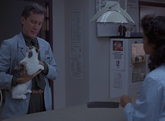 Immediate Family - Michael James Woods holding calico cat with assistant in veterinarian's clinic