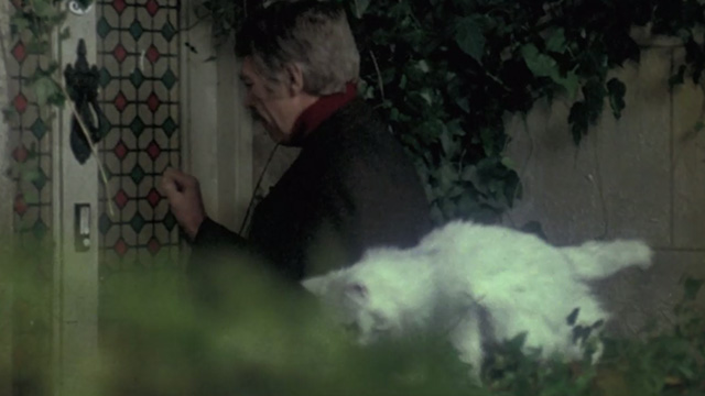 The Internecine Project - long-haired white Angora cat moving away from Professor Elliot James Coburn at front door