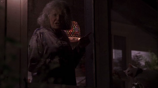 Jeepers Creepers - cat lady Eileen Brennan behind screen on porch with cats