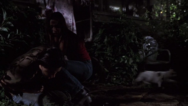 Jeepers Creepers - cats running out of house past Darry and Trish