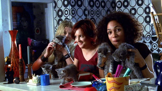 Josie and the Pussycats - Josie Rachel Leigh Cook, Val Rosario Dawson and Melody Tara Reid with gray kittens