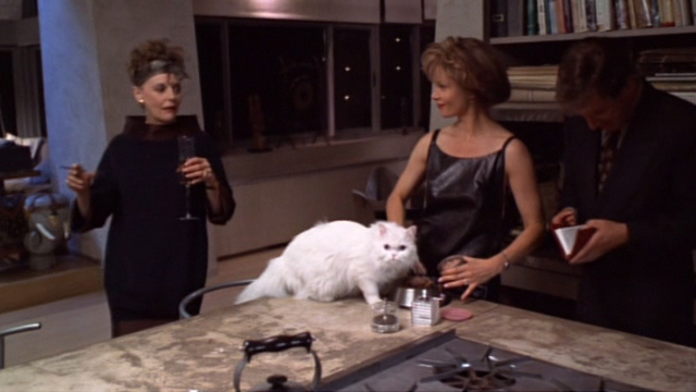 Jungle 2 Jungle - Charlotte Lolita Davidovich with Coco white Persian cat and Fiona Carole Shelley and Michael Tim Allen