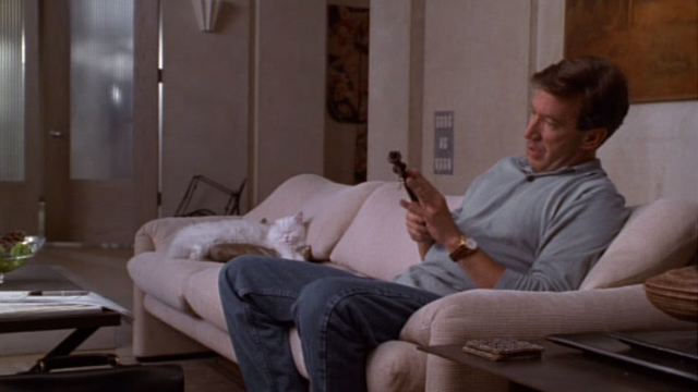 Jungle 2 Jungle - Michael Tim Allen sitting on couch with Coco white Persian cat