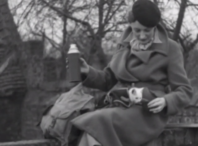 Kitten Carrier Bag - woman pouring milk from thermos for white kitten in harness