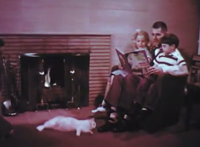 Kittens: Birth and Growth - white cat Milly lying in front of fire with family