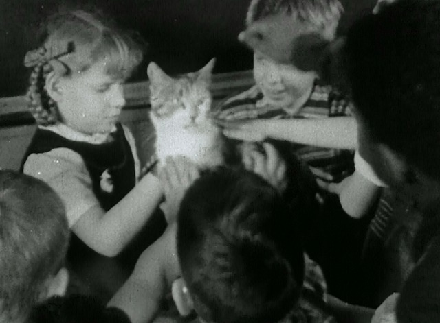 Kitty Cleans Up - Kitty tabby cat being petted by children in school