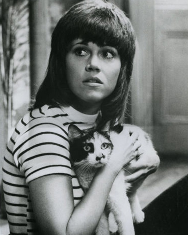 Klute   Jane Fonda Bree With Calico Cat Still