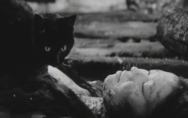 Kuroneko - black cat sitting on chest of dead women