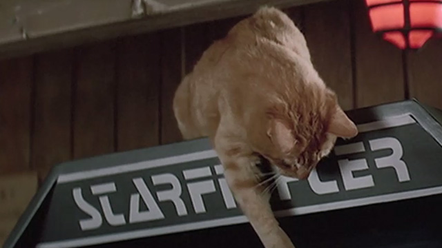The Last Starfighter - orange tabby cat on top of Starfighter arcade game played by Alex Lance Guest with people gathering around