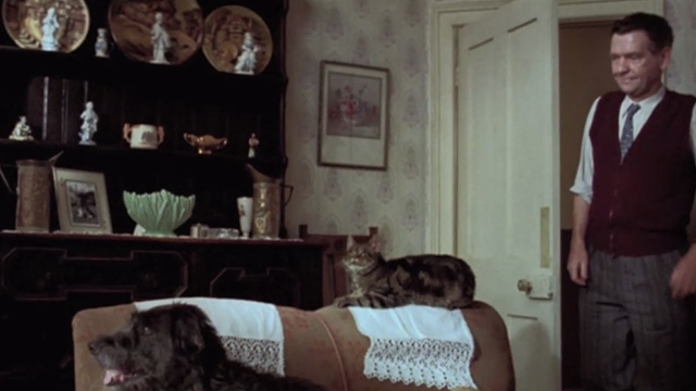 Let Him Have It - tabby cat on back of couch with dog and Mr. Bentley Tom Courtenay