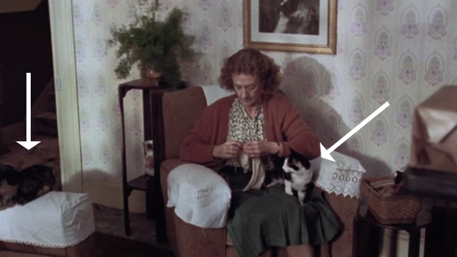 Let Him Have It - tuxedo cat on Mrs. Bentley's Eileen Atkins lap with tabby cat nearby