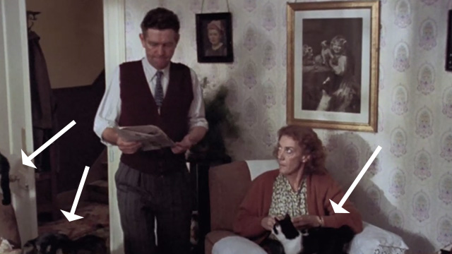 Let Him Have It - tuxedo cat on Mrs. Bentley's Eileen Atkins lap with tabby cat and tuxedo cat nearby and Mr. Bentley Tom Courtenay