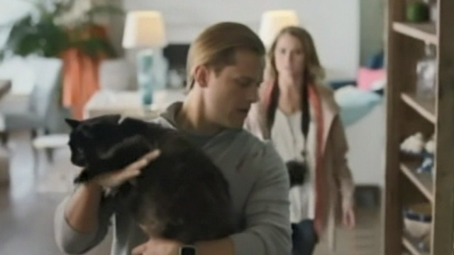 Like Cats and Dogs - Spencer Wyatt Nash holding long-haired black cat Mozart