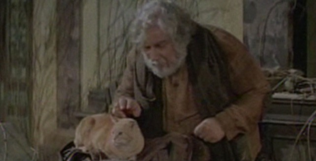 Logan's Run - Old Man petting orange cat