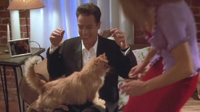 Love Stinks - Seth French Stewart with longhaired ginger tabby Gracie on lap