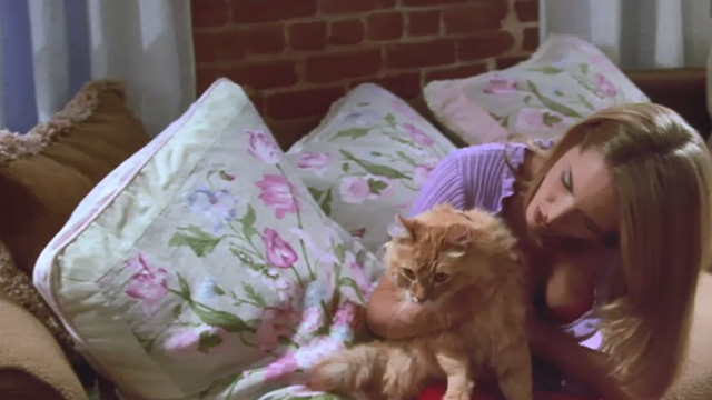 Love Stinks - Chelsea Bridgette Wilson holding longhaired ginger tabby Gracie