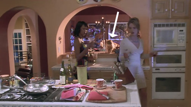 Love Stinks - Chelsea Bridgette Wilson and Tyra Banks with longhaired ginger tabby Gracie on counter in background