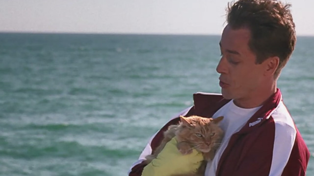 Love Stinks - Seth French Stewart holding longhaired ginger tabby Gracie at end of pier