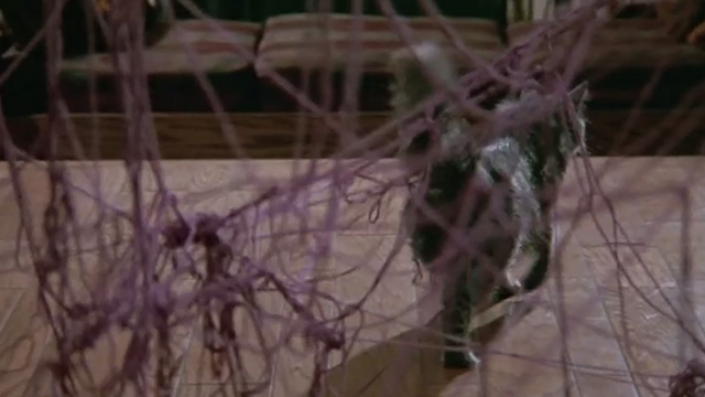 Madhouse - long-haired gray cat Scruffy walking away from a mass of yarn